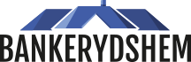 logo_bankerydshem